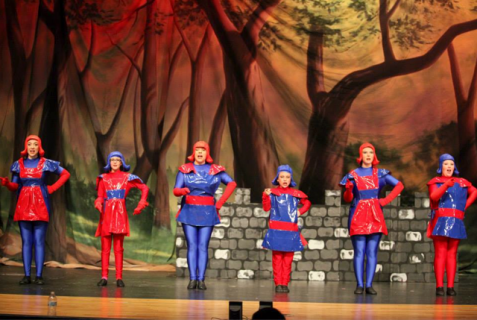 Shrek the Musical Dulac Dancers costumes
